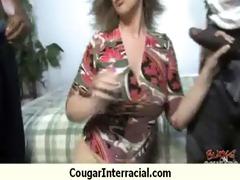 cougar